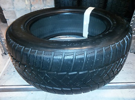 Dunlop Sp Winter Sport  R17