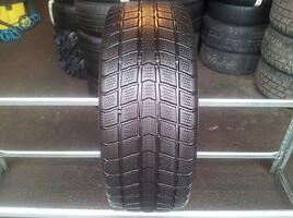 Roadstone Euro-Win apie 7mm Žieminės