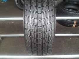 Roadstone Euro-Win 555 apie 7, Žieminės