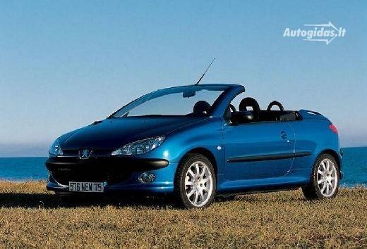 Peugeot 206 2005-2006