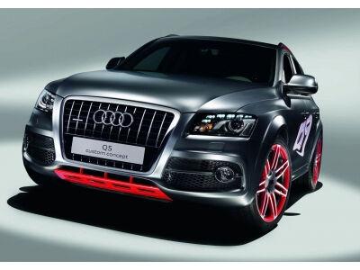 Audi Q5 Custom konceptas