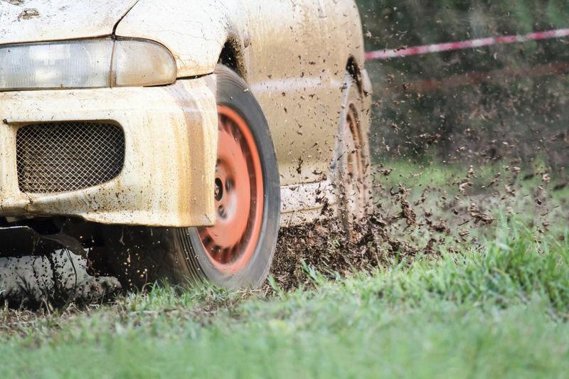 WRC pasaulyje – nieko naujo