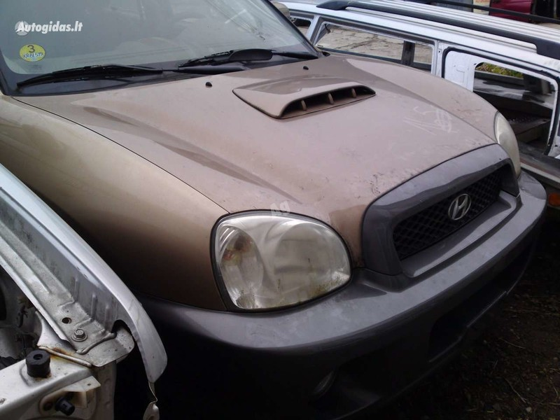 Hyundai Santa Fe 2002 m dalys