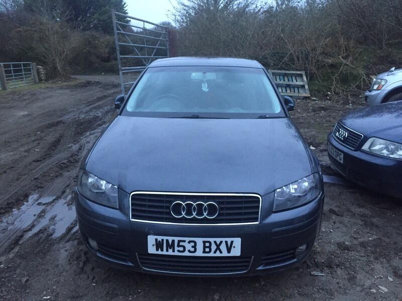 Audi A3 8P 2004 m dalys