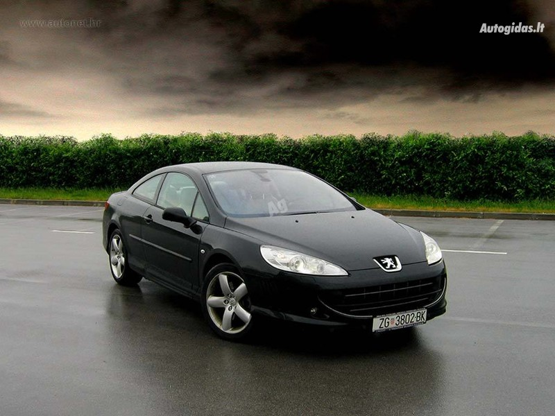 Peugeot 407 2007 m dalys