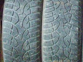 Bridgestone CONTINENTAL, NOKIAN R17 universalios padangos lengviesiems