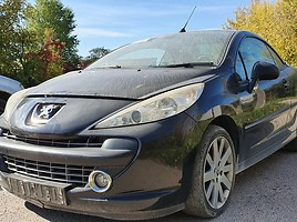 Peugeot 207 2007 m dalys