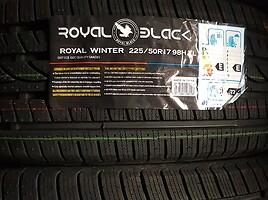Royalblack  Žieminės