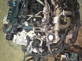 Ford Focus 2009 m dalys