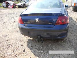 Peugeot 407 2004 m. dalys