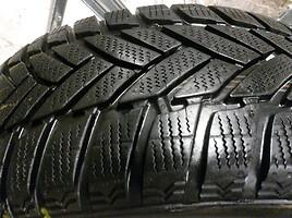 Dunlop SP Winter Sport M3 R16