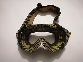 Scorpion akiniai
