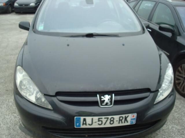 Peugeot 307 I Europa 2004 m. dalys